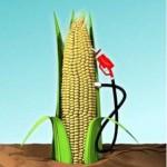 corn-ethanol-pump_100172125_s